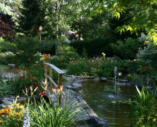 Bassins et lacs : inspiration et photos