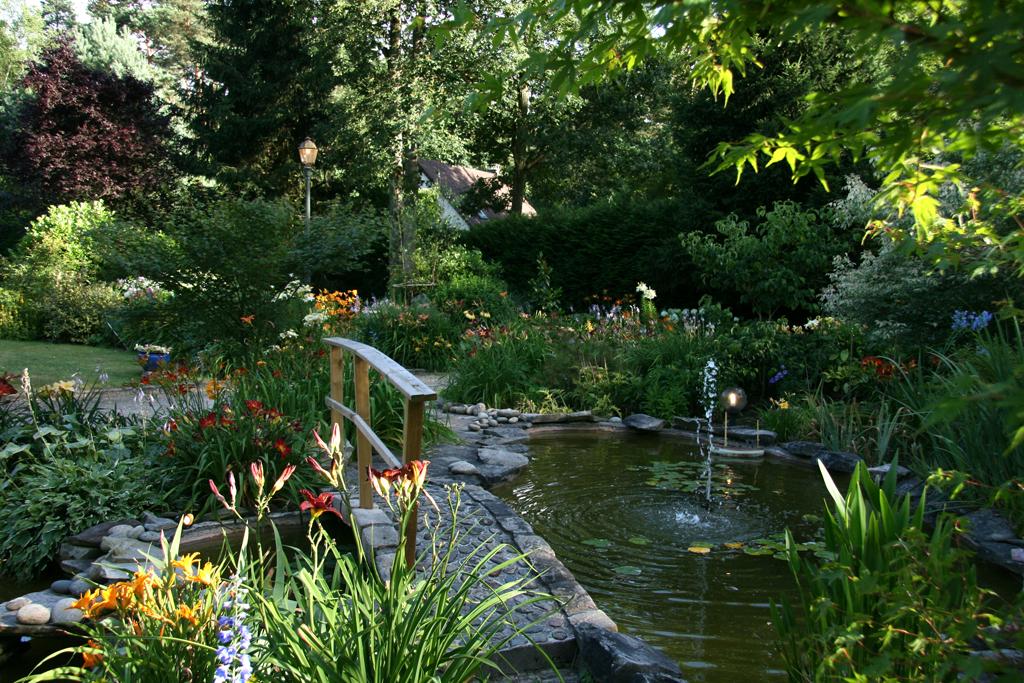 le bassin de patrick au jardin forum de jardinage. Black Bedroom Furniture Sets. Home Design Ideas