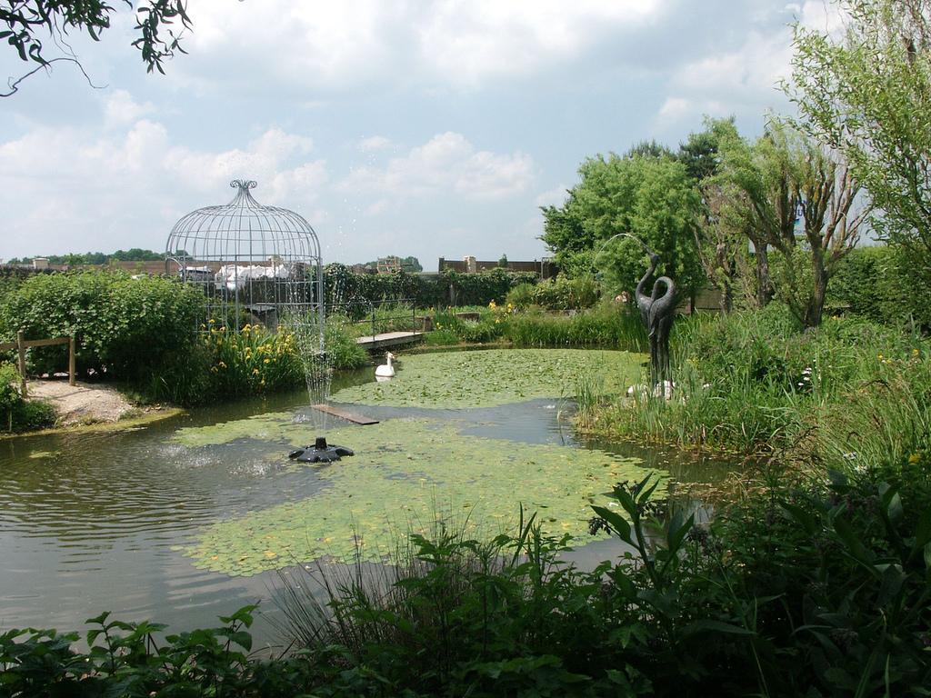 jardins aquatiques