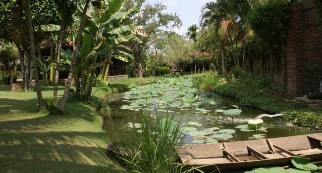 Quelles plantes pour mon bassin le journal du jardin - Bassin carre pour jardin perpignan ...