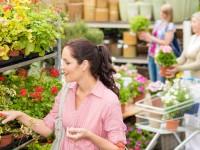 Femme qui choisit une plante dans une jardinerie