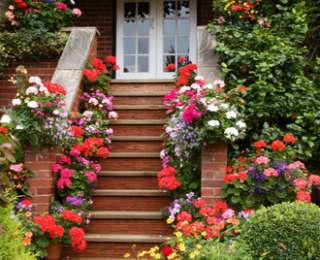 Idées d'escaliers pour jardin