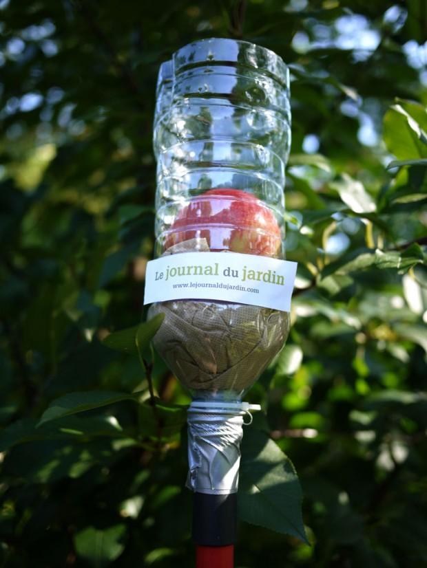 Cueille fruits cueille fruit sur enperdresonlapin - Cueille fruit telescopique ...