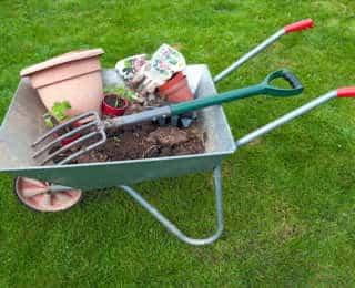 Que faire au jardin au mois de Mars