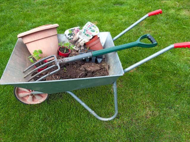 Que faire au jardin au mois de Septembre