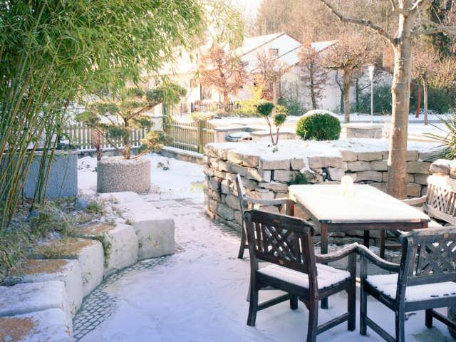 Janvier : que faire au jardin au mois de Janvier ?