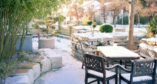 Snowy Frontyard