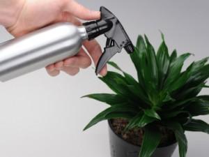 Pulvérisation sur plante verte