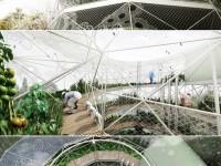 spiral_garden3