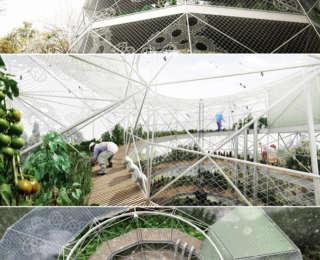 Un jardin spirale