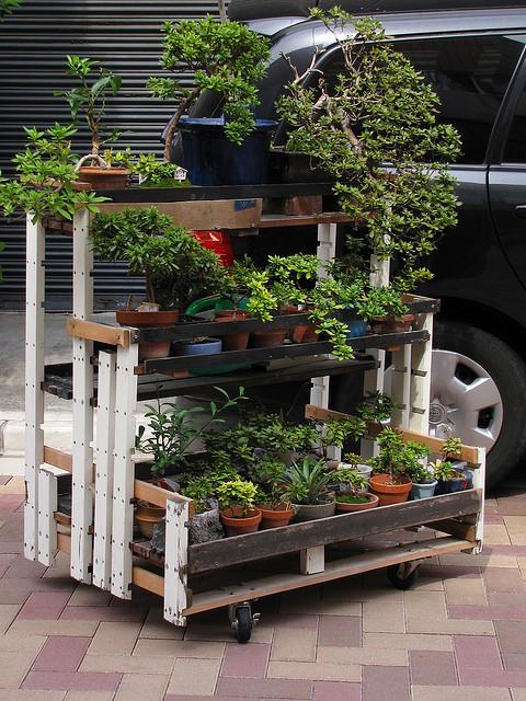 Table de potager construire une table pour votre potager - Construire une table de jardin en bois ...
