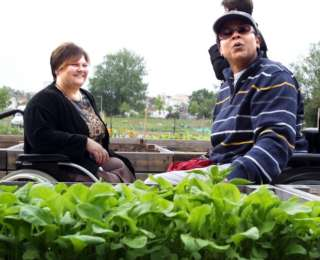 Le handi-jardinage, une belle initiative !