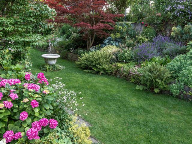Que faire au jardin au mois de Juillet