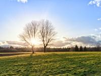 Paysage d'hiver avec soleil