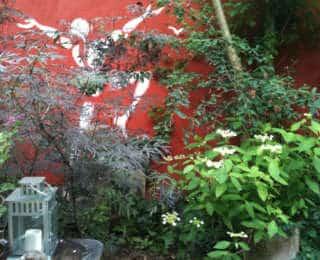 Le jardin éco-poétique de Camille They