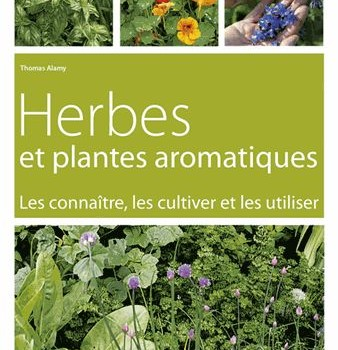 herbes et plantes aromatiques parution f vrier 2014 le journal du jardin. Black Bedroom Furniture Sets. Home Design Ideas