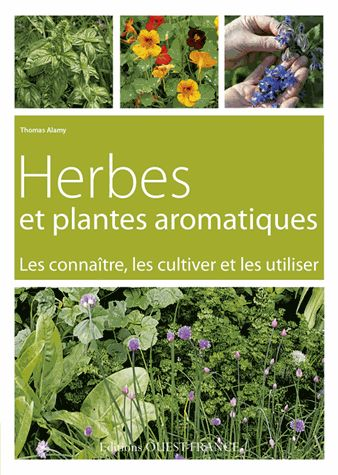 herbes et plantes aromatiques de thomas alamy le journal du jardin. Black Bedroom Furniture Sets. Home Design Ideas