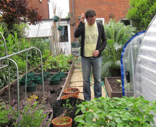 Que faire au jardin au mois de Juin