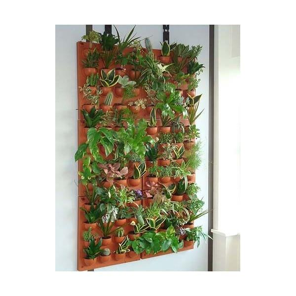 Les plantes d 39 int rieur une d coration naturelle - Kit mur vegetal interieur ...