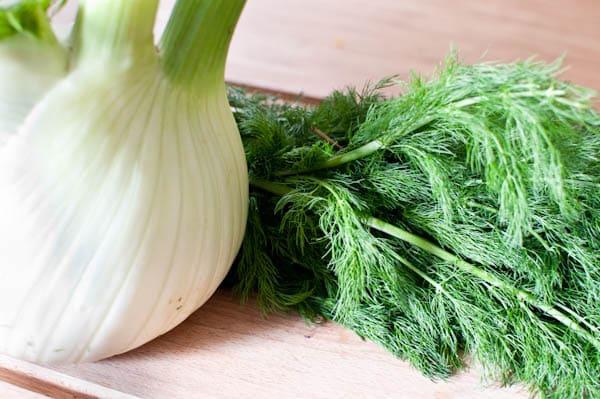 Utilisation du fenouil - Comment cuisiner fenouil ...