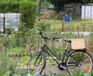 Des ateliers de jardinage écologique à Melun