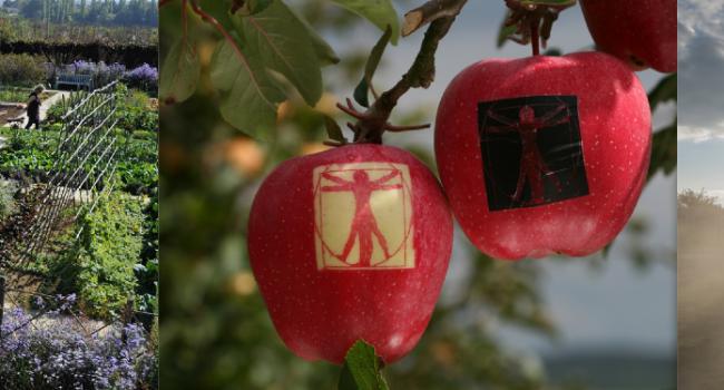 Mars r ouverture des jardins fruitiers de laquenexy le - Jardins fruitiers de laquenexy ...