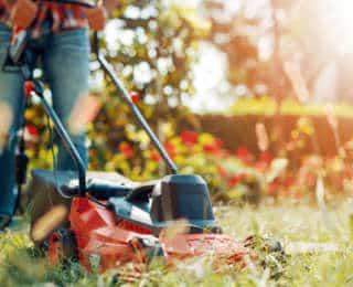 Tondeuse de jardin : thermique, électrique, autoportée… Laquelle choisir ?
