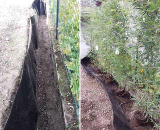 Eviter la prolifération des bambous avec une barrière anti-rhizomes