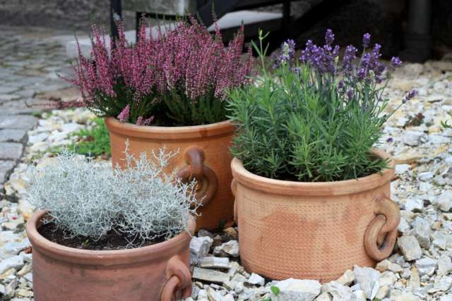 3 pots de fleurs